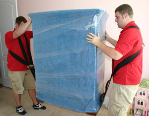 moving-company-and-bed-bugs